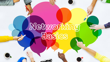 Professional Networking Basics: What You Need to Know