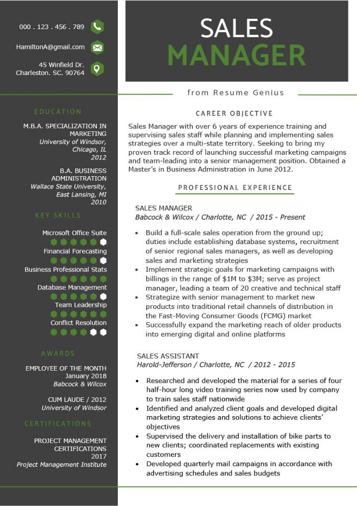 Sales manager CV example