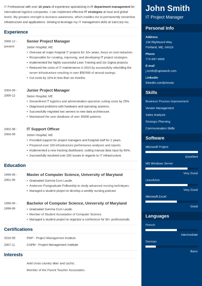IT manager CV example