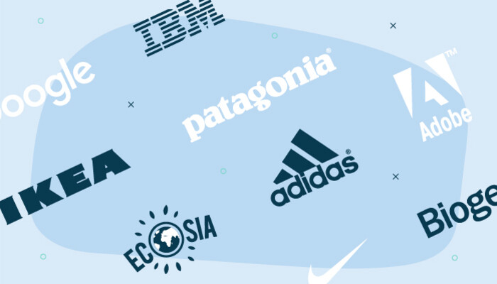 Illustration of the company logos of Google, IBM, IKEA, Patagonia, Ecosia, Adidas, Adobe, Nike and Biogen